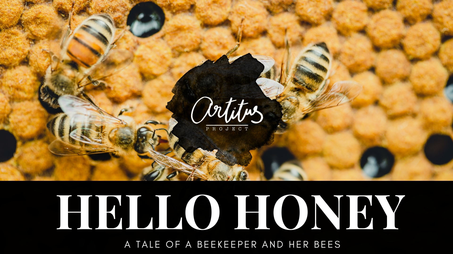"""Our film """"HELLO HONEY, a tale of a beekeeper and her bees"""" is here!"""